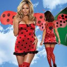Lady Bug Beauty Costume-Code: YF8915