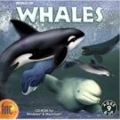World Of Whales Education Interactive CD Ages 9+