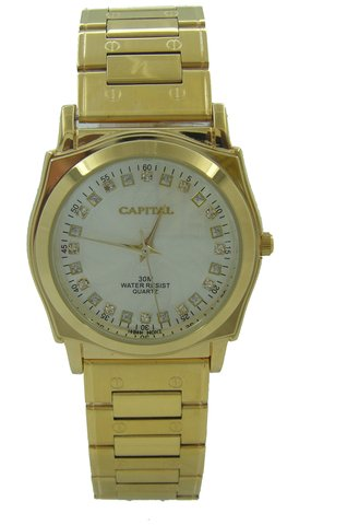 Capital brand men Watch WA760G