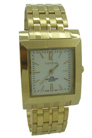 Capital brand men Watch WA764G