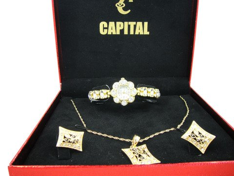 Capital brand set women Watch WA284n