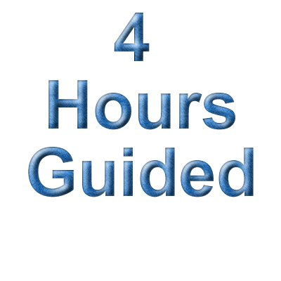 4 Hour Guiding & Consulting Fee