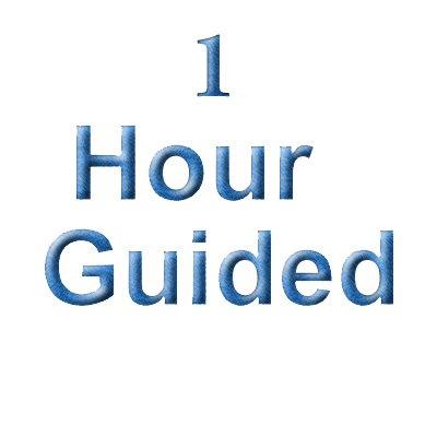 1 Hour Guiding & Consulting Fee