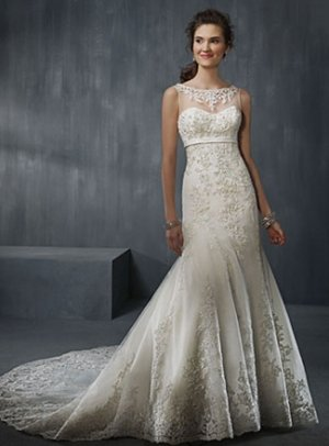 Gorgeous Fully Appliqued Sleeveless A-line Wedding Dress AA0016