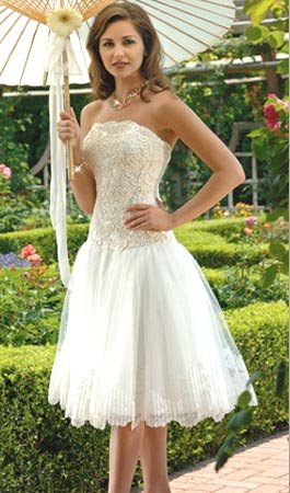 Wedding Dresses/ Wedding Gowns -- Stunning Lace Short Bridal Gown WS0022