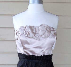 Max and Cleo by BCBG Champagne and Black Strapless Dress Size 12