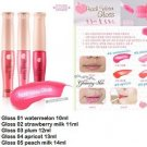 Wholesale Deal - House Peach Water Lip Gloss 10 ML X 25 Numbers Pack