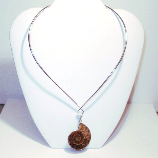 Genuine Ammonite Fossil Choker Necklace (1a) SOLD