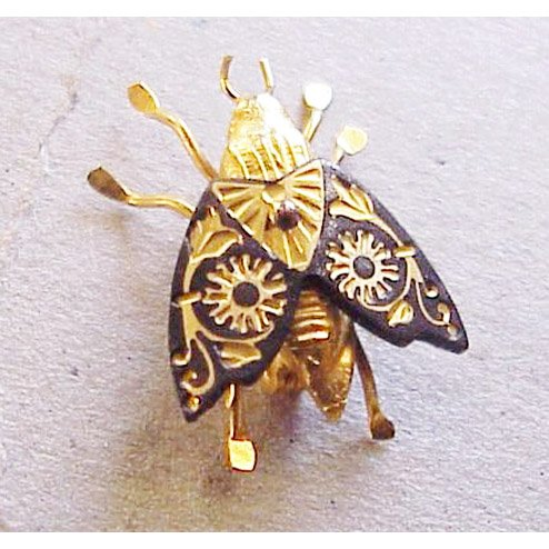 Fly With Patterned Black And Gold Wings