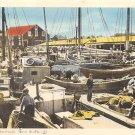Yarmouth Fishing Fleet, Nova Scotia, Canada (A272)
