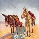 An Arab Donkey Boy - Tuck Oillette (A514-515)