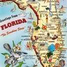 Florida Greetings - Map Postcard (A387)