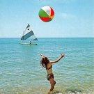 Cape Cod, Mass Vacation Fun Postcard (A470)