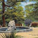 Jackson, Miss, MS Postcard - Fountain Livingston Park (A653)