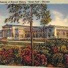 Chicago, Ill Postcard Grant Park, Museum of Natural History (B5) IL, Illinois