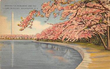 Washington, DC Washington Monument, Cherry Blossomsl Postcard 1942 (B388)