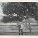 Under the Old Apple Tree- Romance Postcard (B421)
