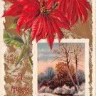 A Merry Christmas Poinsettias - Embossed -J. Winsch (B540-541)