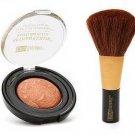 Black Radiance Baked Powder Bronzer 3515 Gingersnap & Blush Brush C6103