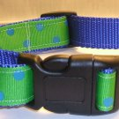 L-XL: Blue nylon collar- Lime green with blue polka dots