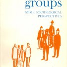 Small Groups Some Sociological Perspectives by Clovis R. Shepherd ~ Book 1964