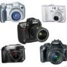 Learn How to Make Money with Your Digital Camera