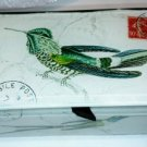 Bird Glass Box