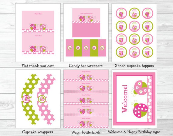 Pink Green Ladybug Printable Birthday Party Package #A165