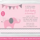 Pink Elephant Chevron Printable Birthday Invitation Editable PDF #A197