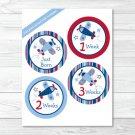 Airplane Monthly Milestone DIY You Print PDF Stickers & Iron On Transfers #A112