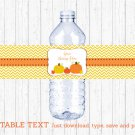 Pumpkin Chevron Gender Neutral Water Bottle Labels Printable Editable PDF #A400
