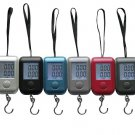 40kg*10g Portable Weight  Backlight Digital Electronic hanging Scale for price calculating