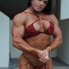 Bodybuilders Theil, Hendricks & LeFrancois WPW-751 DVD