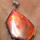Masterpiece Red Color Grade A freeform ammolite ammonite Sterling Silver Pendant
