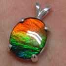 Grade AA rare four colors ammolite ammonite Sterling Silver Pendant