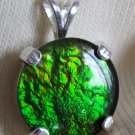 Rare Lime Green canadian freeform ammolite ammonite Sterling Silver Pendant
