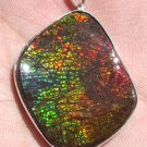 Huge Grade AA Canadian Freeform Dragon Skin gemstone Sterling Silver Pendant
