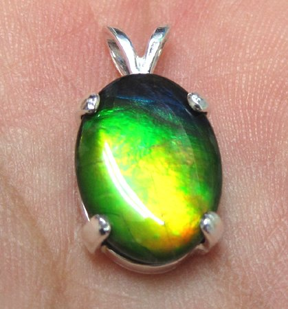 Grade A Canadian Freeform 14x10mm Ammolite Sterling Silver Pendant