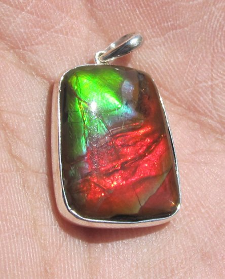 Grade A Excellent 19x14mm Freeform Canadian Ammolite Ammonite Sterling Silver Pendant