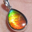 Rare Grade AA 5 Colours Canadian Freeform ammolite in Silver Sterling Pendant