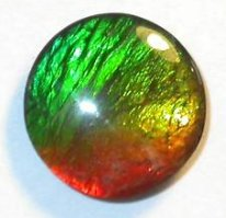10mm Grade AA Unique Rainbow Pattern Ammolite Gemstone