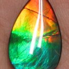 18 x 11mm Canadian Ammolite Gemstone for Pendant