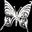 "(BTR 6) 6"" white vinyl Butterfly die cut window laptop decal sticker."