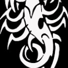 "(SCR 4) 6"" white vinyl Tribal Scorpion die cut window laptop decal sticker."
