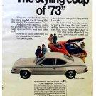 AMC HORNET 1973