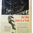OUR BOY LIVES IN A TREE, ARTICLE 1954