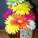 Gerbera Daisies in wood rustic seed box