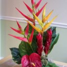 Tropical Heliconia Ginger and Anthirium arrangement
