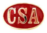 CSA red CONFEDERATE STATES OF AMERICA BELT BUCKLE