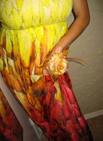 Size S: GORGEOUS FEATHER CHIFFON SILK MAXI DRESS XS/S